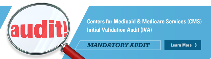 Centers for Medicaid & Medicare Services Initial Validation Audit